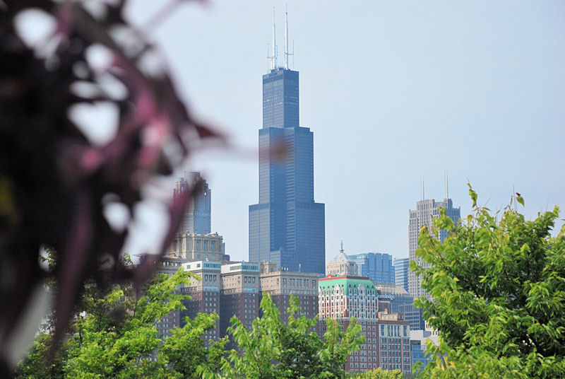 Sears Tower - fra Museum Island